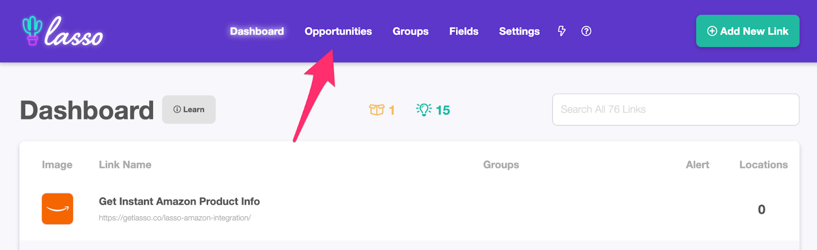lasso dashboard and where to find the opportunities tab