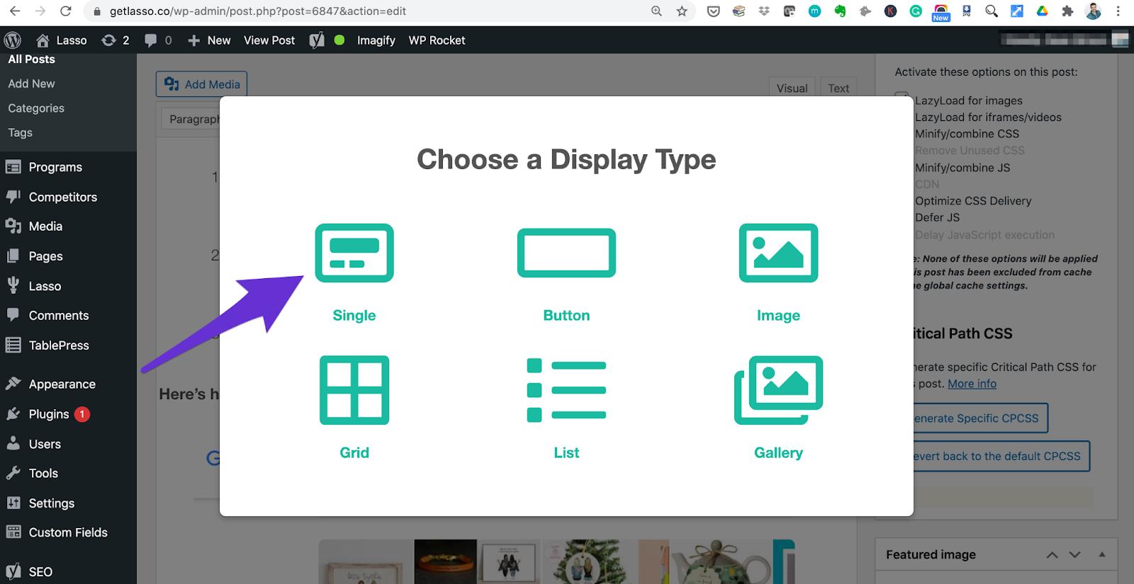 choosing a display type inside lasso