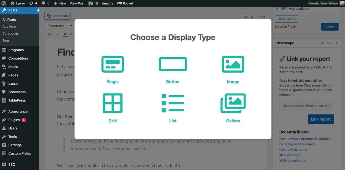 choosing a display type using lasso