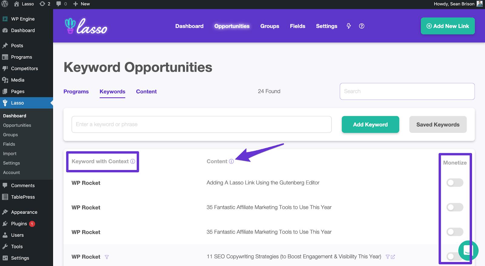 lasso keyword opportunites page