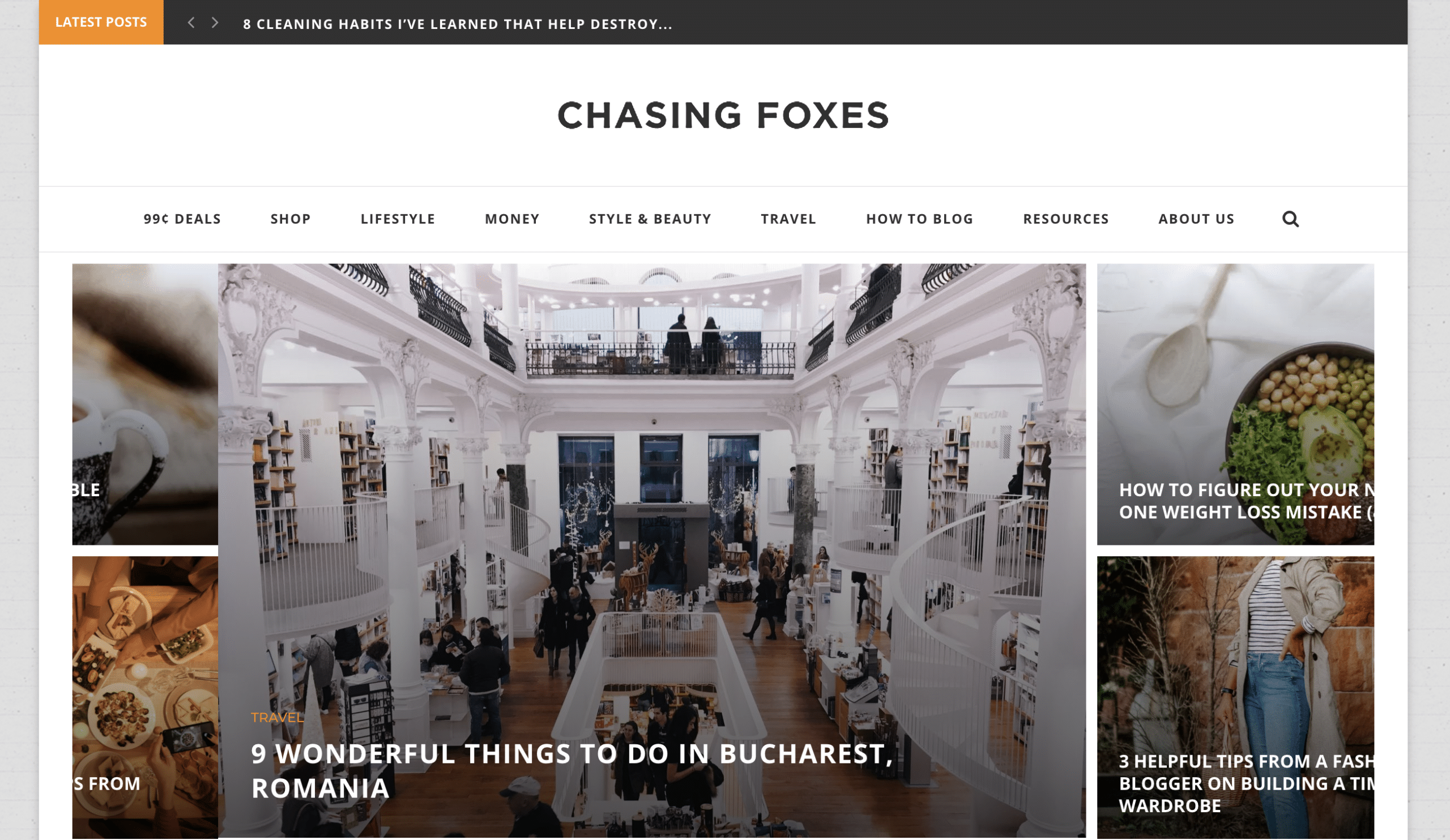types of blogs that make money in the lifestyle niche is chasing foxes