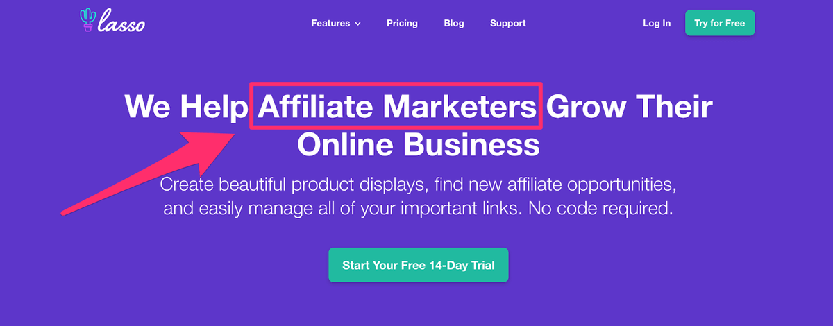 homepage addressing specific customers