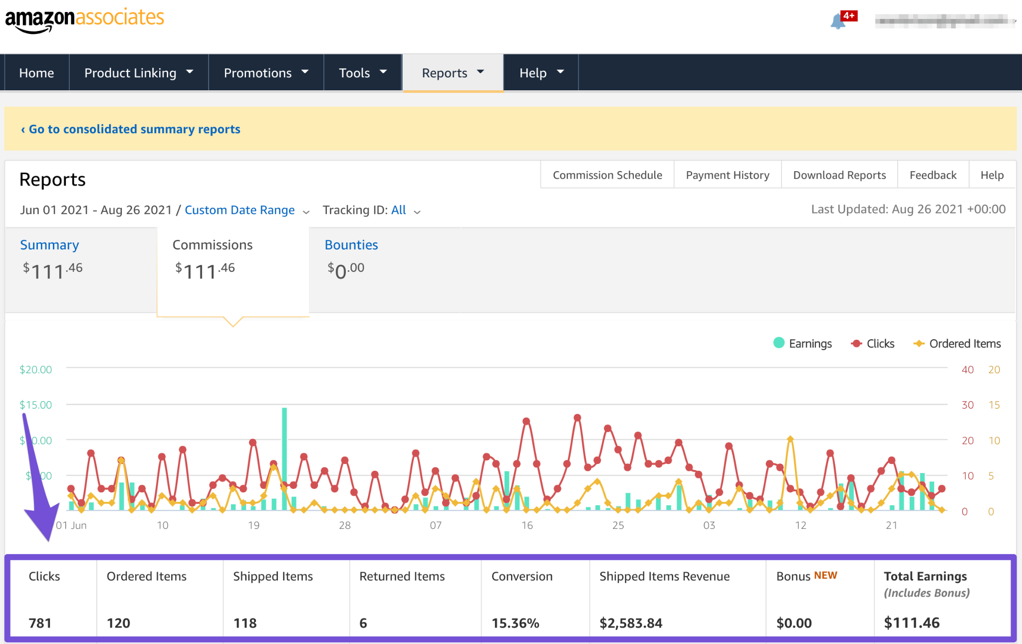 data at bottom of your earnings report showing conversions and income