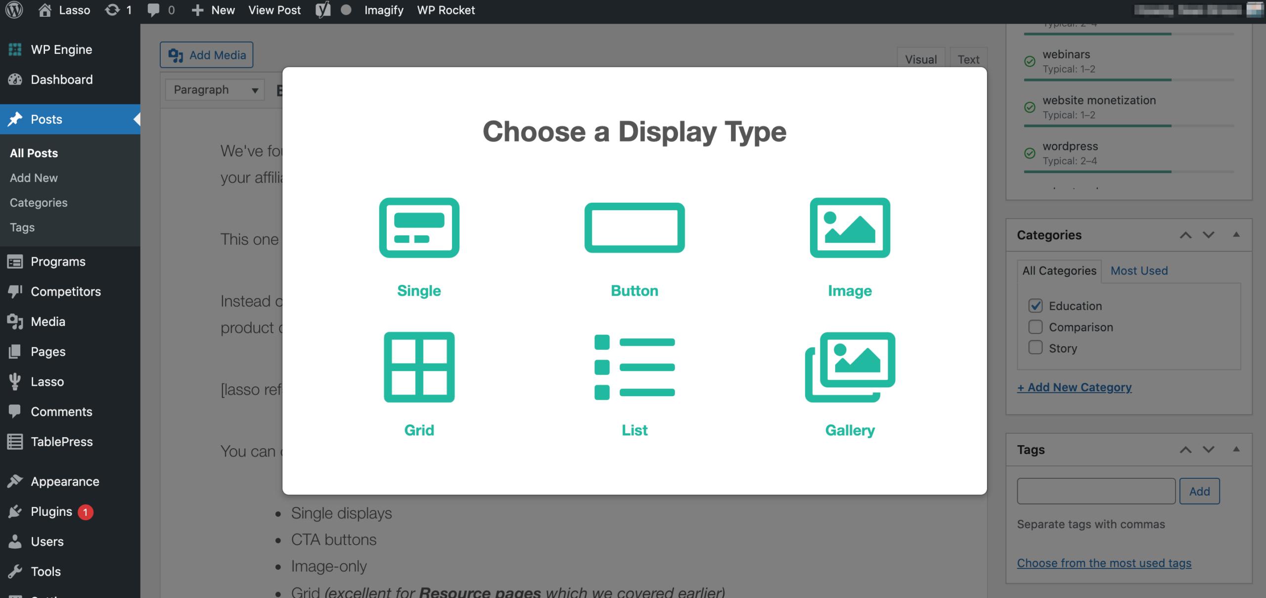 choosing lasso display type in lasso in wordpress